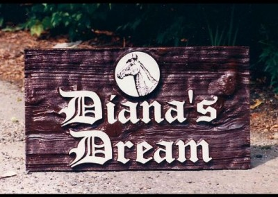Diana's Dream Sign