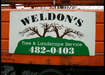 Weldon's Tree & Landscape Service